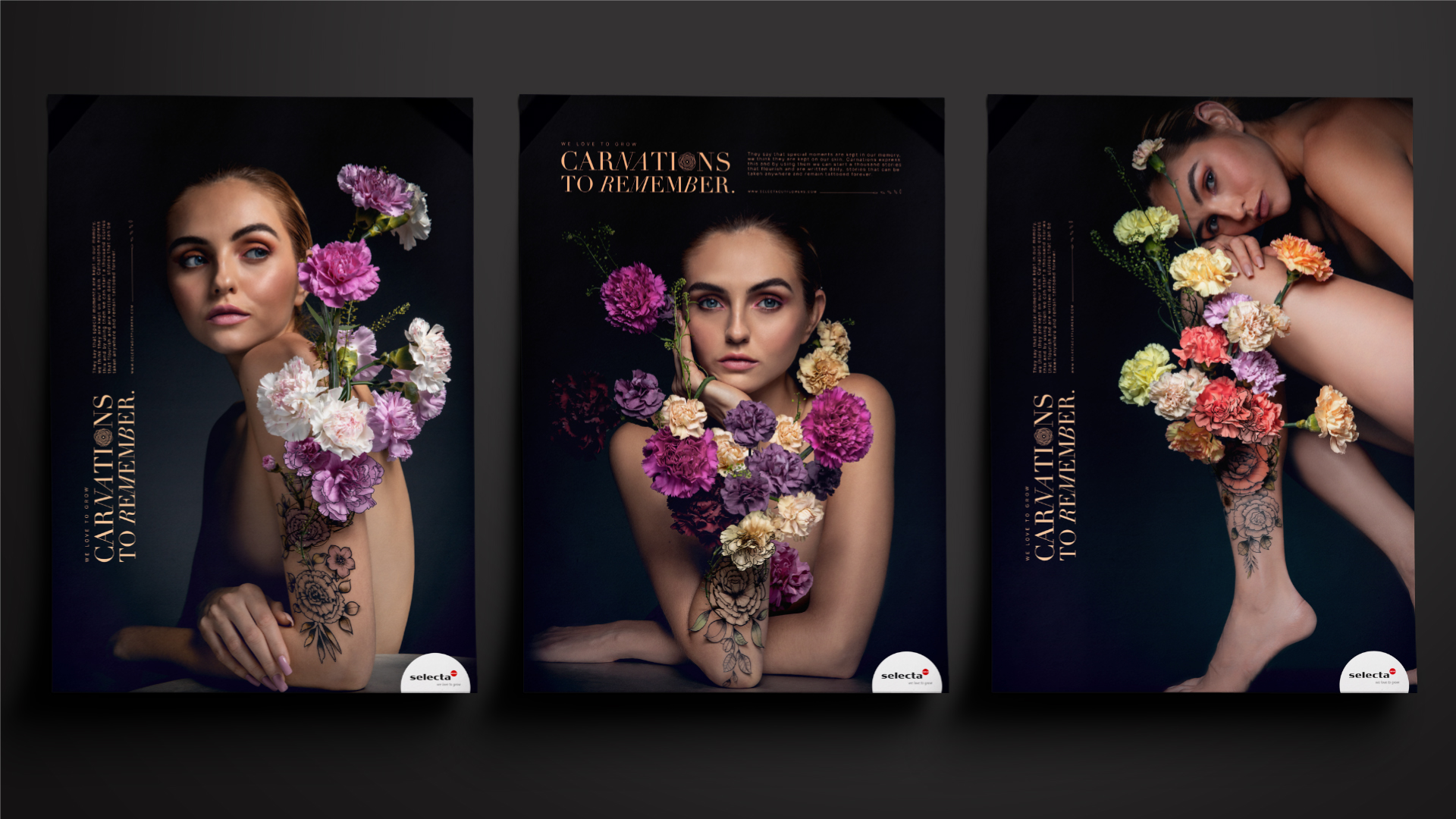 Carnations by Selecta